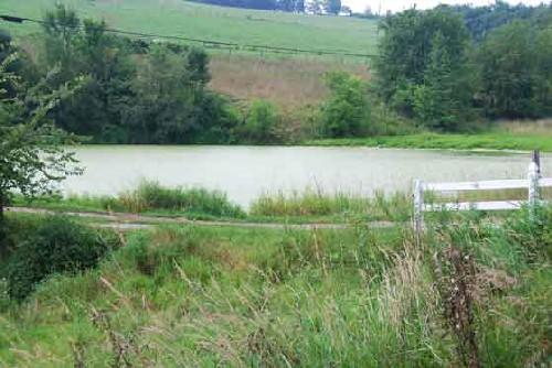 Farmers House Insurance >> Farm Ponds | PHMC > Pennsylvania Agricultural History Project